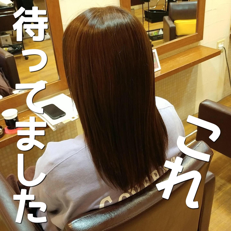 髪質改善ヘアエステ 〜ストレート重視〜