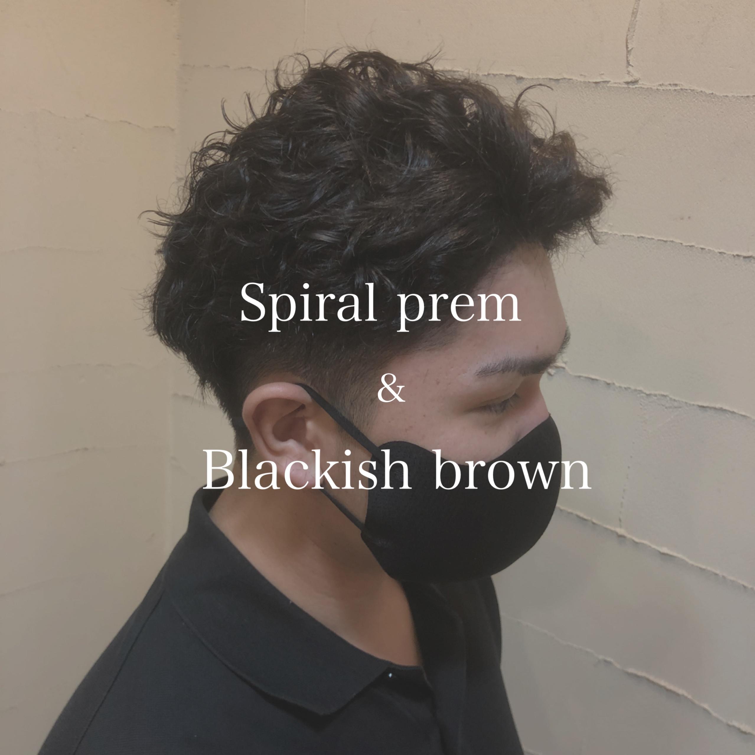 Spiral perm & Blackish brown✨
